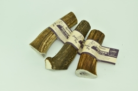Deer Antler for dogs. Antler D