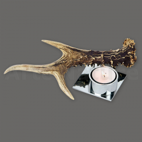 Candles holder roedeer antler. For 1 candle. Decoration. Chalet. Fireplace. 17_32206