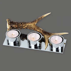 Candles holder roedeer antler.