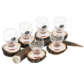 Set liqueur 6 glasses 60ml with real deer antler. stag. hunting. 173701