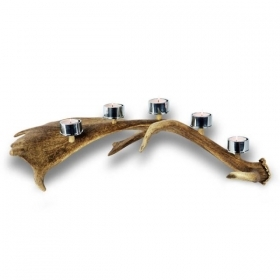 Candles holder with real fallow deer antler. Stag. Decoration. Chalet. Fireplace. 17_32211