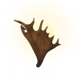 Applique, wall lamp with real fallow deer antlers. 1xE14 25x35cm 1523