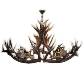 Chandelier with real deer and fallow deer antlers. Lighting. 8xE14 M: 160x80x90cm 1573