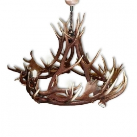 Chandelier with real deer and fallow deer antlers. Lighting. 5xE14 M: 100x100x80cm 157201