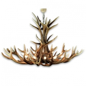 Chandelier with real deer antlers. Lighting. 12xE14 M: 140x100x90cm 15780203