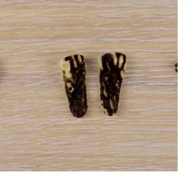 10x Button of real deer antler. Size: 30mm - 1854