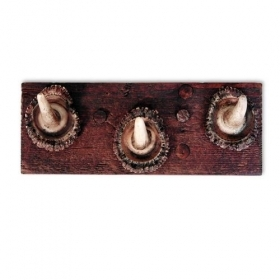 Coat rack with real red deer antlers. 25x10cm 119920