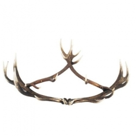 Coat rack with real red deer antlers. 130x70cm 119916