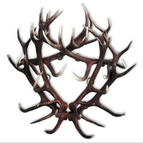 Coat rack with real red deer antlers. 110x110cm 119924