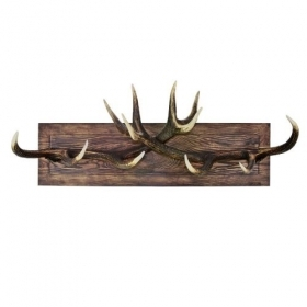 Coat rack with real red deer antlers. 100x35cm 119928