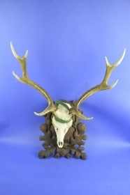 006TSK Trophy sika deer. Hunting. Decoration. Fireplace. Chalet.